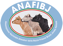logo_ANAFIBJ_205x150